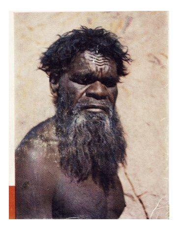 aborini.jpeg